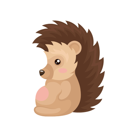 Cute lovely hedgehog sitting, prickly animal cartoon character vector Illustration isolated on a white background.