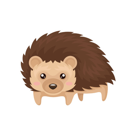 Lovely hedgehog prickly animal cartoon character vector Illustration isolated on a white background.