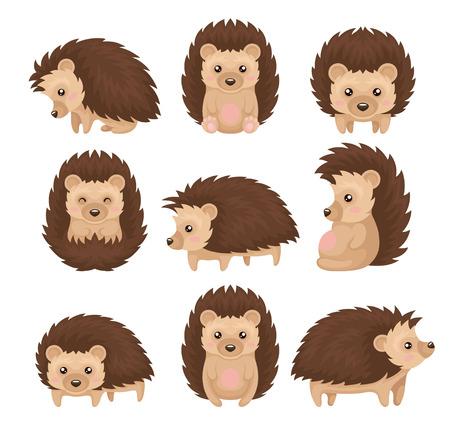 Riccio sveglio in varie pose insieme, personaggio dei cartoni animati animale spinoso con faccia buffa vettoriale illustrazione isolato su sfondo bianco.