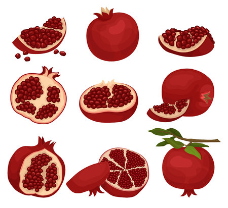 Set of sliced and whole pomegranates. Organic and tasty fruit full of juicy seeds. Natural food. Healthy nutrition. Graphic elements for juice packaging. Flat vector icons isolated on white background Illustration