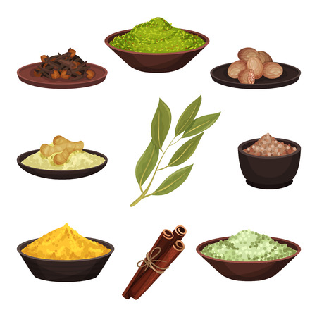 Set of various natural spices. Aromatic seasonings for food. Cooking ingredients. Culinary theme. Graphic elements for recipe book. Colorful flat vector illustrations isolated on white background.