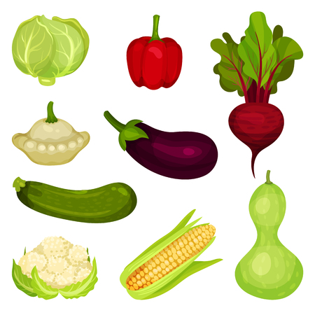 Set of fresh vegetables. Healthy food. Natural farm products. Ingredients for salad. Graphic elements for promo poster of grocery store. Colorful flat vector illustrations isolated on white background