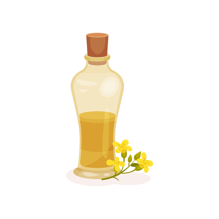 Colorful illustration of transparent glass bottle of fresh rapeseed oil and small yellow flowers. Natural and healthy product. Organic cooking ingredient. Flat vector icon isolated on white background
