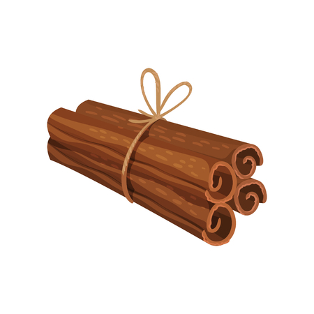 Four rolled sticks of cinnamon tied with rope. Aromatic condiment. Fragrant seasoning. Oriental spice. Decorative element for product packing. Detailed flat vector design isolated on white background.