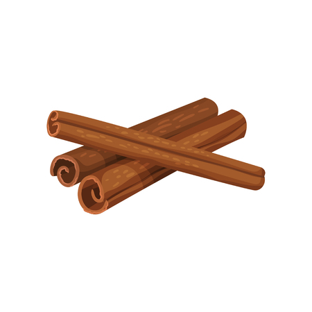 Three rolled sticks of cinnamon isolated on white background. Aromatic spice. Condiment for dishes. Cooking theme. Graphic element for recipe book or product packaging. Detailed flat vector design.