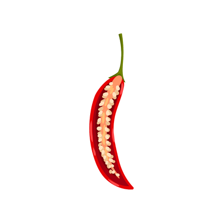 One cut half of fresh red hot chili pepper with seeds inside. Organic vegetable. Healthy food. Natural product. Detailed illustration in flat style isolated on white background. Colorful vector icon.