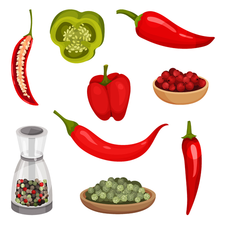 Set of fresh peppers and condiments. Organic vegetable. Fragrant spice. Cooking ingredients. Culinary theme. Detailed illustrations in flat style isolated on white background. Colorful vector icons. Иллюстрация