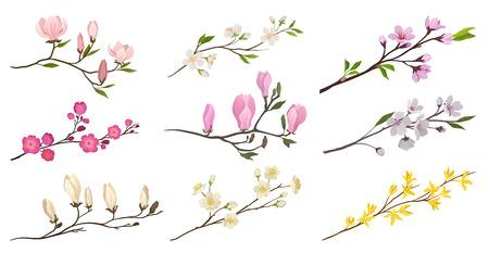 Satz blühender Zweige mit kleinen Blumen und grünen Blättern. Zweige von Obstbäumen. Detaillierte flache Vektorsymbole