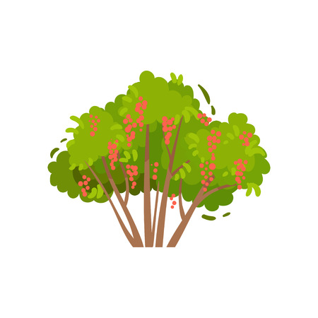 Green brush with tasty red currants. Shrub with sweet edible berries. Natural food. Agricultural plant. Farm product. Gardening theme. Colorful flat vector illustration isolated on white background. Illusztráció