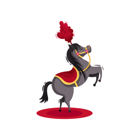 Horse with red saddle and feathers on head, standing on hind legs. Circus animal performance. Gray pony with black mane and tail. Entertainment theme. Flat vector design isolated on white background. Illustration