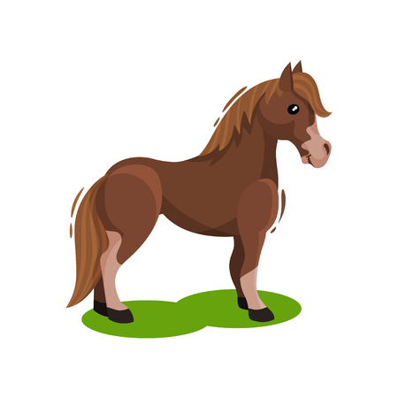 Brown horse standing on green grass, side view. Hoofed animal with beautiful mane and long tail. Flat vector design Illustration
