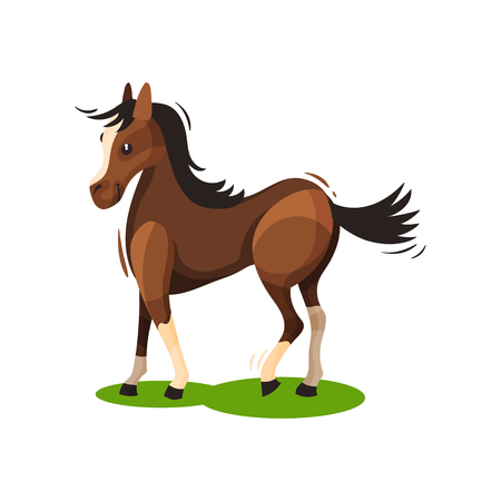 Flat vector design of lovely brown horse walking by green grass. Hoofed mammal animal with black mane and tail 免版税图像 - 116930061