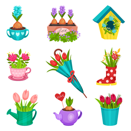 Set of different floral compositions. Beautiful spring flowers planted in pot, wooden box, watering cup, teapot. Nature theme. Colorful flat icons isolated on white background. Cartoon vector design.