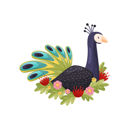 Cartoon colorful peacock on white background. Flora and fauna concept. Bird and spring. Vector flat illustration. Illustration