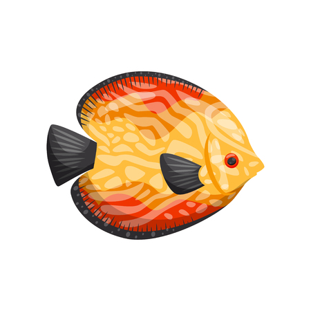 Colorful tropical fish on white background. Water life. Cartoon exotic fish. Aqua concept. Fauna of underwater world. Vector flat illustration.