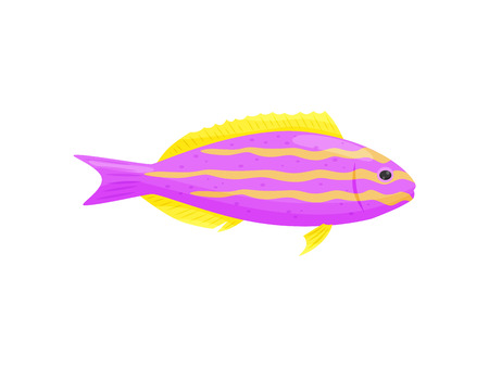 Pink aquarium fish on white background. Water life. Cartoon exotic fish. Aqua concept. Fauna of underwater world. Vector flat illustration.