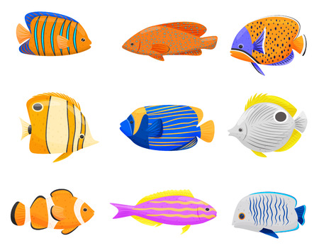 Collection of colorful tropical fish on white background. Cartoon exotic fish. Aqua concept. Fauna of underwater world. Vector flat illustration.