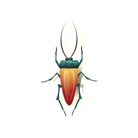 Cartoon insect on white background. Vector illustration.