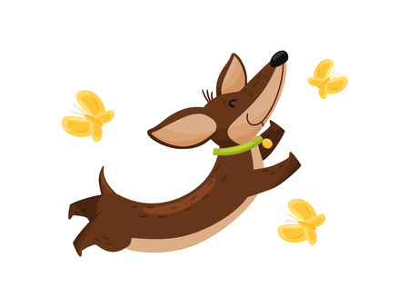 Happy dachshund with butterflies on white background. Vectores