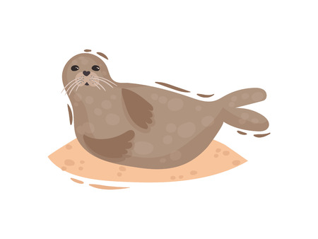 Cute fur seal lying on its side. Vector illustration on white background.