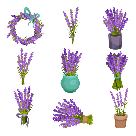 Set of different bouquets of purple flowers. Vector illustration on white background.