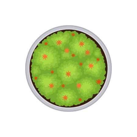 Plan of a round flower bed with red flowers. View from above. Vector illustration on white background. Banque d'images - 122819323