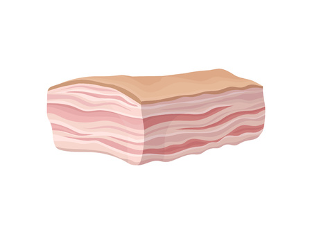 Fresh lard with layers of meat. Vector illustration on white background.