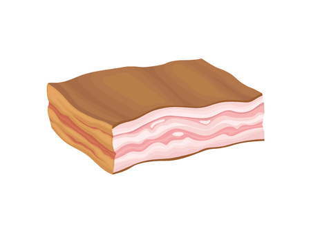 Large piece of uncut bacon. Vector illustration on white background.