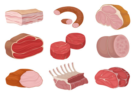 Meat products and pieces of raw meat. Vector illustration on white background. Vectores