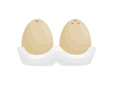 Stylish salt and pepper shaker in the form of chicken eggs. Vector illustration on white background.