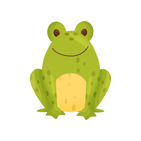 Ceramic salt shaker or pepper frog in the form of a green frog. Vector illustration on white background. Illustration