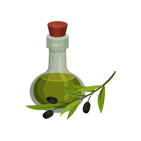Glass bottle with olive oil. Olive branch nearby. Vector illustration on white background.