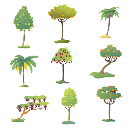 Set of fruit trees with fruits. Vector illustration on white background.
