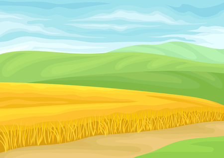 Beautiful landscape with a field of wheat. Vector illustration on white background. Stockfoto - 123197217