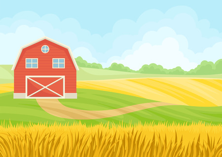Large red barn in a field of wheat. Vector illustration on white background.