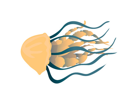 Yellow-blue jellyfish with thick tentacles close-up. Vector illustration on white background. Standard-Bild - 123845845