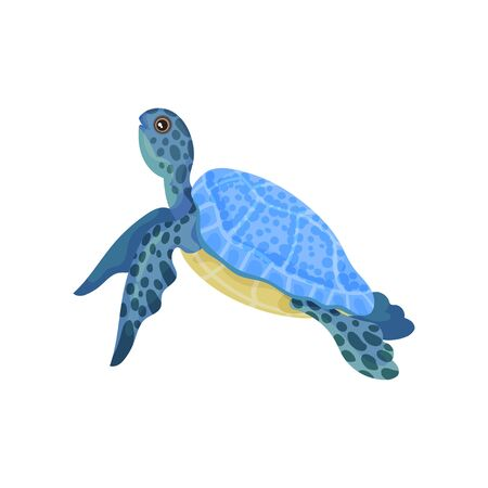 Turtle with light blue armor. Vector illustration on white background.