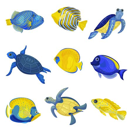 Set of different exotic fishes and turtles. Vector illustration on white background. Illustration