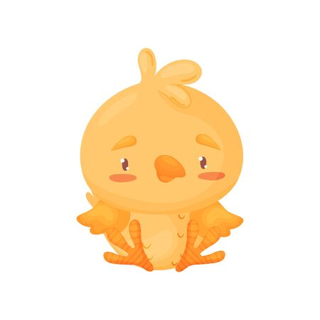 Cute yellow chick is sitting. Vector illustration on white background. 일러스트