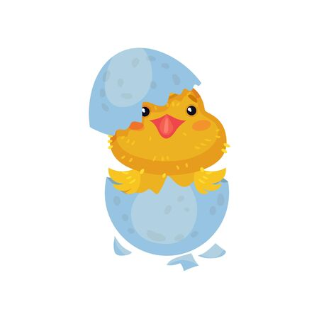 Little yellow cartoon chicken hatched from an egg. Vector illustration on white background. 일러스트