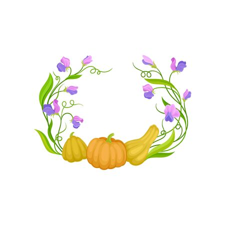 Three pumpkins on long stems in the shape of a semicircle. Vector illustration on white background.