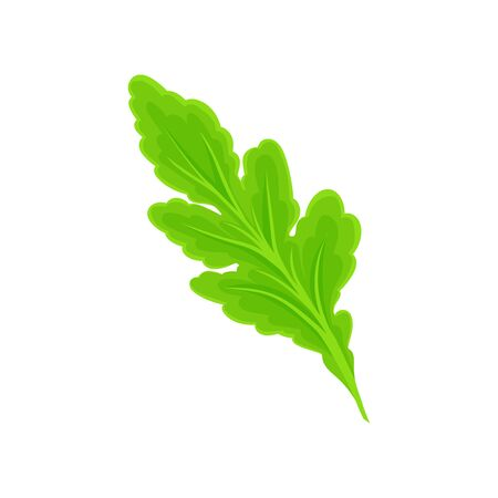 Light green leaf. Vector illustration on white background. Illusztráció