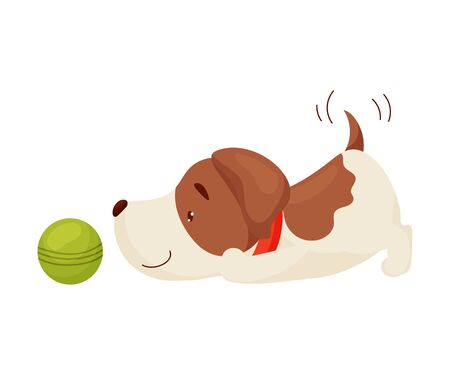 Cute puppy playing ball. Vector illustration on white background.