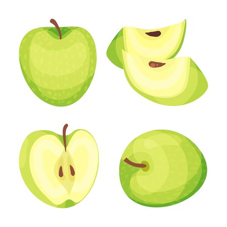 Set of green apples. Vector illustration on white background.
