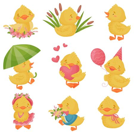 Set of cute ducklings. Vector illustration on a white background.
