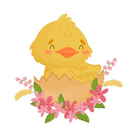 Cute yellow duckling sitting in the shell. Vector illustration on a white background.