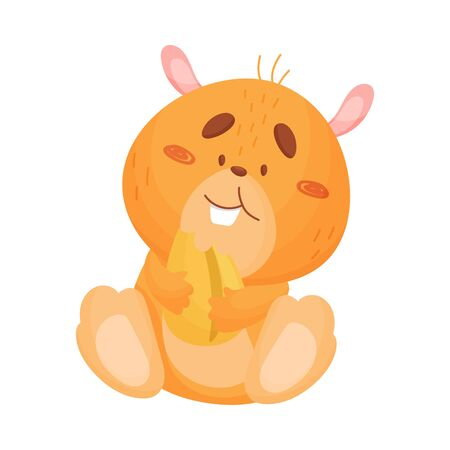 Cute orange hamster is sitting and eating a huge grain. Vector illustration on white background.