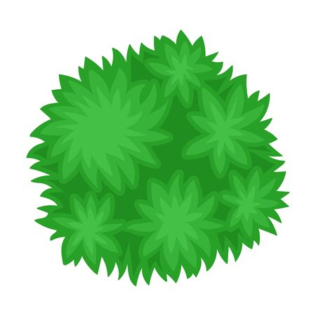 Bush. View from above. Vector illustration on a white background.