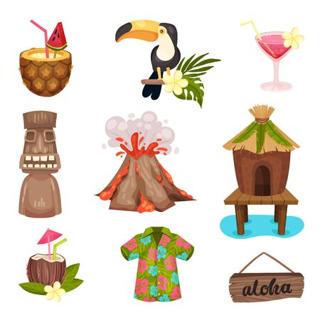 Hawaii symbols set. Toucan, volcano, totem, cocktail, hut, shirt aloha Vector illustration on a white background