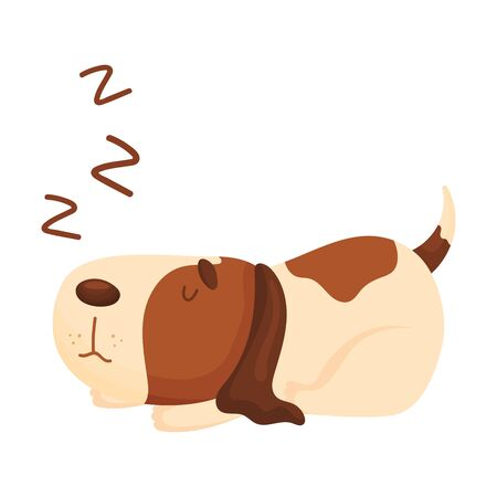 Cute beagle is sleeping. Vector illustration on a white background.